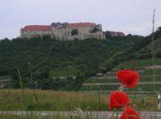 15_Schloss_Neuenburg